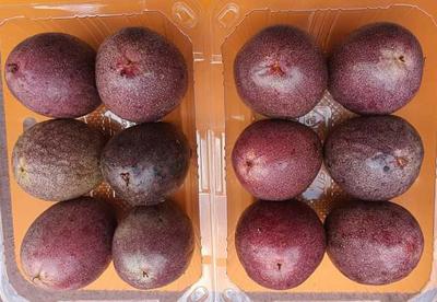 백가지 향기가 나는 여신의 과일 백향과 1kg(12과)