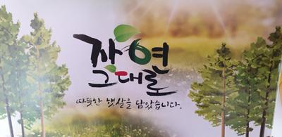 [구름위농장] 자연산 머위즙 60팩 *100ml*BOX