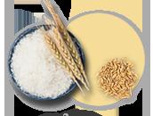 쌀/잡곡 선택