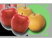 과일/채소 선택